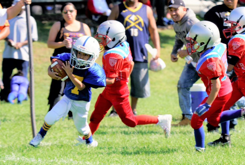 The Nation Youth Football League