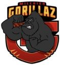 Mile High Gorillaz Youth Football Team