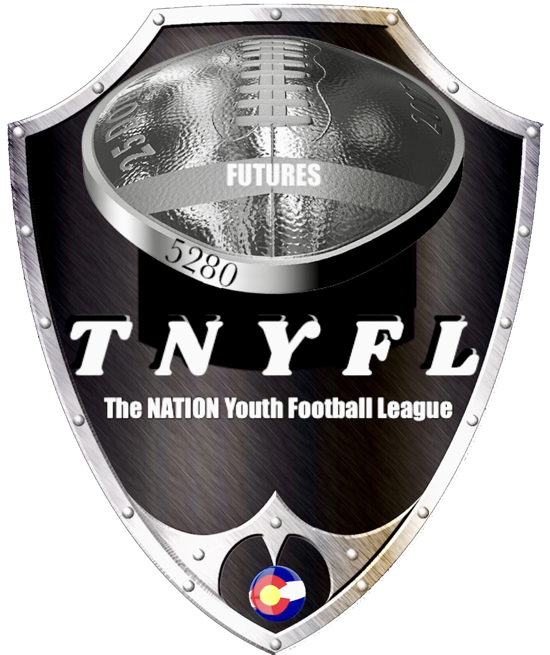 The Nation Youth Football League logo